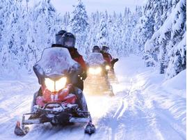 Снегоходы в Москве