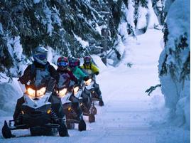 Сафари на снегоходах в Москве