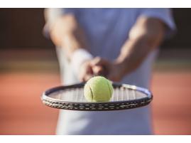 мастер-класс по большому теннису в Москве